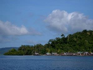 cendrawasih kampung sawinggrai raja ampat papua barat