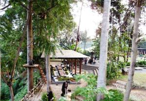 The Green Forest Bandung