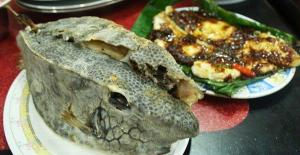 Ikan kudu-kudu masak sambal